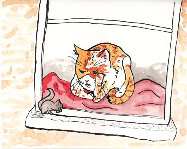 chat et ecureuil