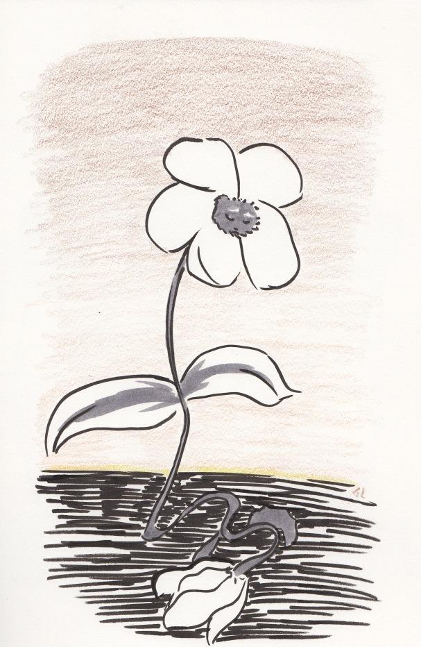 pauvre petite fleur