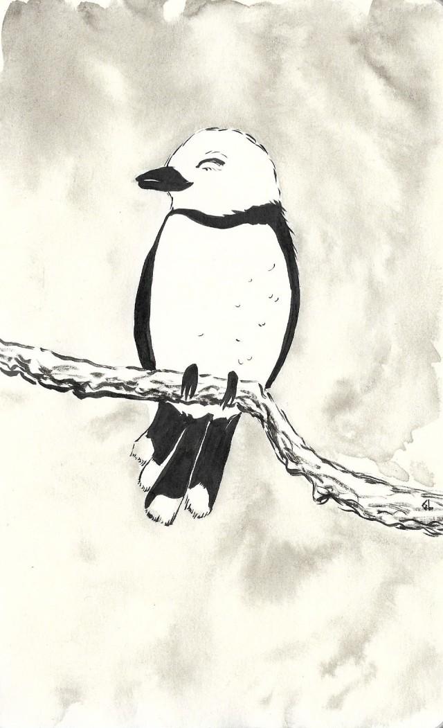 petit oiseau.jpg